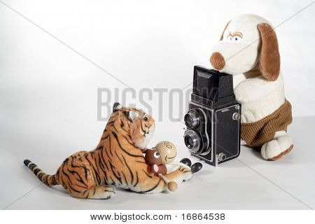 Plushy photographer with model -    unauthorized homework