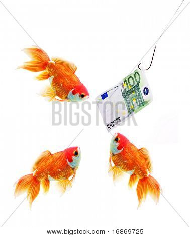 Money on the hook and three gold fish business metaphor