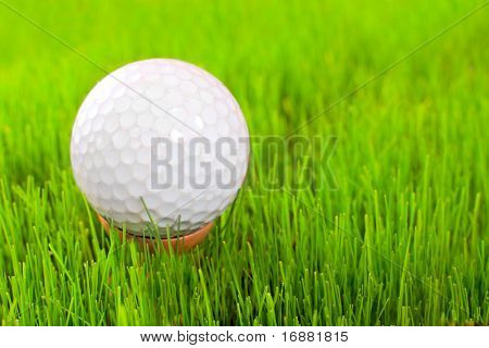 Golf ball on tee over a  green.  Close up with shallow DOF.