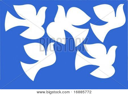 vector illustration dove isolated on  blue background