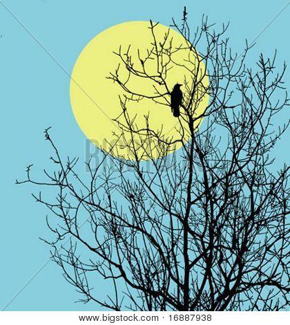 vector illustration ravens sitting on tree against sun
