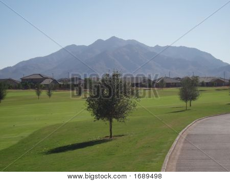 Golf Course Homes