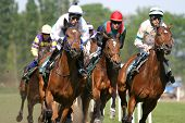 stock photo of running horse  - horses and jockeys running fast on the race - JPG