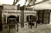 picture of auschwitz  - Ovens used to burn bodies in a German concentration camp - JPG