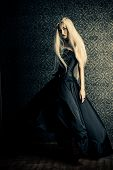 Full length portrait of a beautiful gothic woman in long black dress. Antique castle style. Hallowee poster