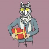 Vector dog concept. Hand draw vector siberian husky dog on human body. Husky in human suit with gift poster