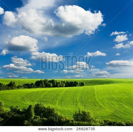 beautiful  summer landscape and cloudy sky