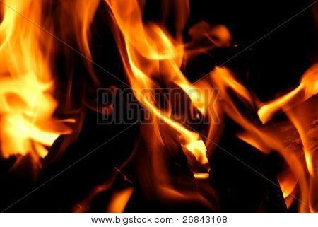 Closeup of the wood on fire