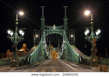 Liberty bridge in Budapest, illuminated at night.