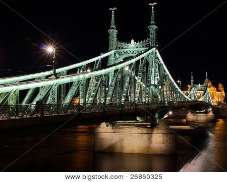 The green Freedom Bridge, Night of Budapest