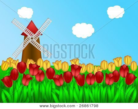 Dutch Windmill In Tulips Field Farm Illustration
