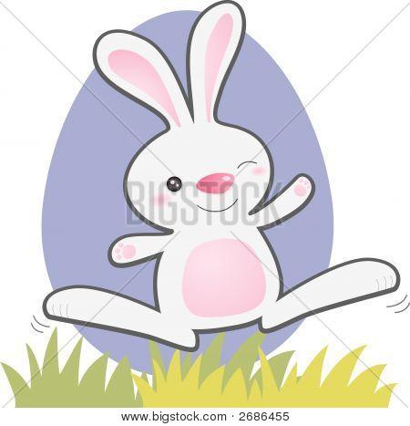 Jumping Bunny