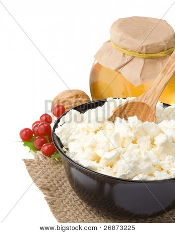 cottage cheese and honey isolated on white background