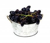 picture of washtub  - A batch of rinsed grapes in a small replica of a washtub - JPG