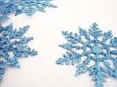 pic of winter trees  - blue glittery snowflakes - JPG