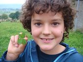 picture of four leaf clover  - Smiling Boy holding green four leaf clover - JPG
