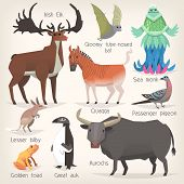 Collection Of Extinct Animals With Names. List Of Mammals, Birds And Sea Creatures That Ceased To Ex poster
