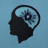 Stylized Head Silhouette. Spider In Brain As Symbol Of Arachnophobia. Concept Of Mental Health And D poster