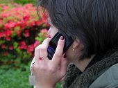 Phone Discussion