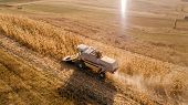 Aerial View Of Harvester Collecting Harvest, Harvesting The Fields poster