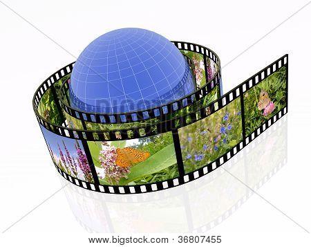 Nature Shots And Globe