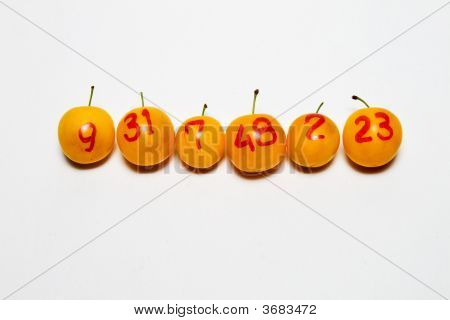 Line Of Plums With Numbers As Lottery Winners