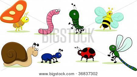 cute insects cartoon set
