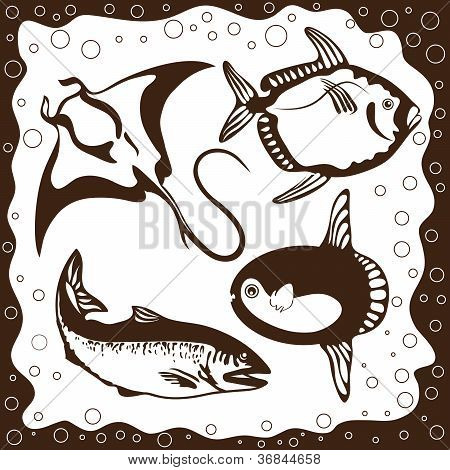 Ocean Fish, Vector Set
