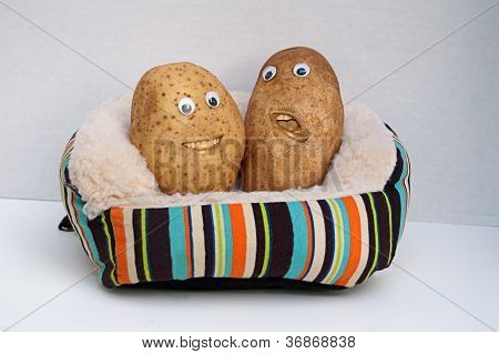 Wo Happy Couch Potatoes