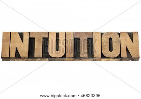 intuition word  - isolated text in letterpress wood type