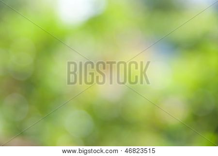 Yellow Green Bokeh Abstract Light Background