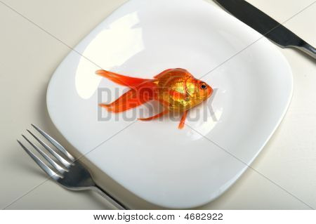 Goldfish In Plate