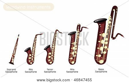 Different Kind Of Musical Saxophone On White Background