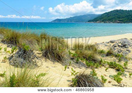 Beautiful Empty Beach
