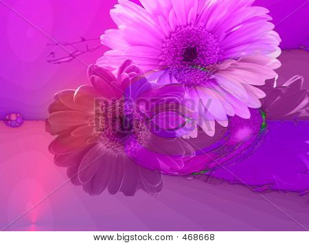Purple Delights