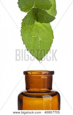 Drop falling from mint leaf into pharmacy bottle, closeup, isolated