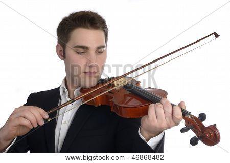 Musician Plays Violin