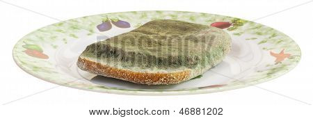 Mouldy Bread Or Sandwitch