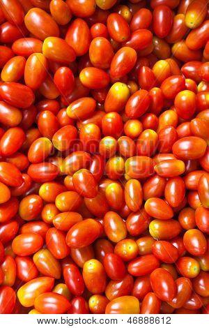 Fresh  Tomatos At The Flower Market In Bangkok