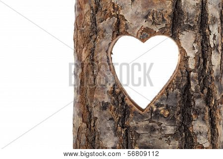 Heart Cut In Hollow Tree Trunk. On White Background
