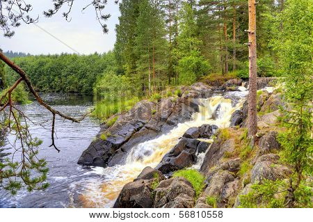 Little Waterfall On The Forest Small River In Karelia