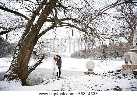 Kiss Bride And Groom In Winter Landscape