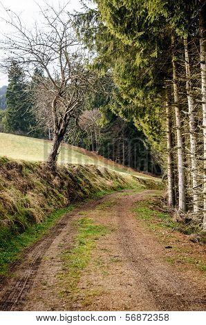 Footpath in Upper Austria