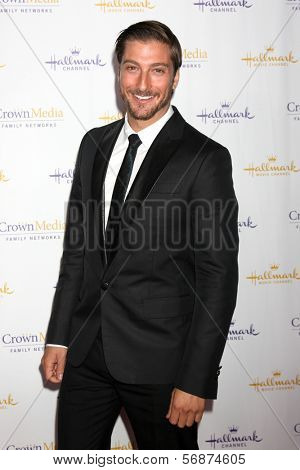 LOS ANGELES - JAN 11:  Daniel Lissing at the Hallmark Winter TCA Party at The Huntington Library on January 11, 2014 in San Marino, CA