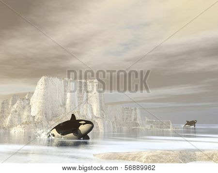 Orcas (killer whales) at the pole - 3D render