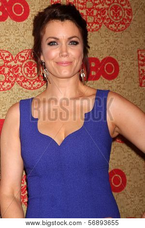 vLOS ANGELES - JAN 12:  Bellamy Young at the HBO 2014 Golden Globe Party  at Beverly Hilton Hotel on January 12, 2014 in Beverly Hills, CA