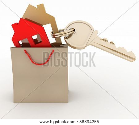 3d model house symbol set in a paper shopping bag and key