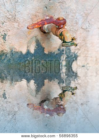 Spigot Reflection