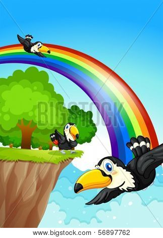 Illustration of a rainbow near the cliff with flying birds