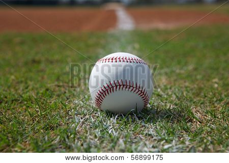 Baseball on the Outfield Grass Close up